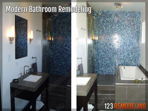 Modern Chicago Bathroom Remodeling
