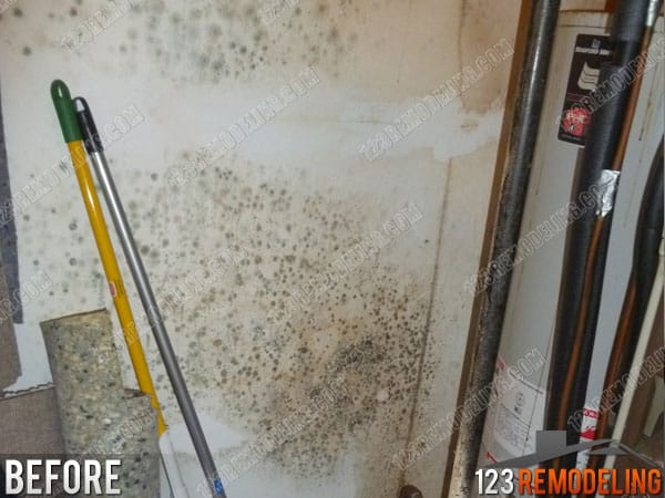 Palatine Utility Room Water Damage Cleanup