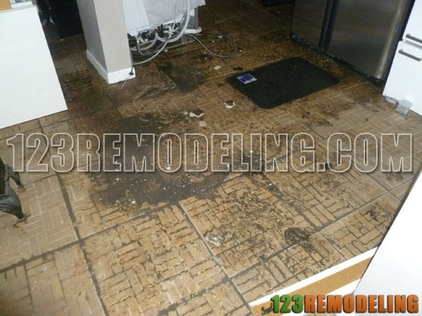 Water Intrusion Clean Up