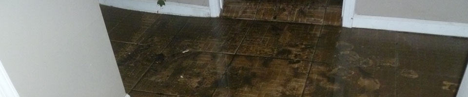 Water Damage Restoration & Repair Services in Chicago