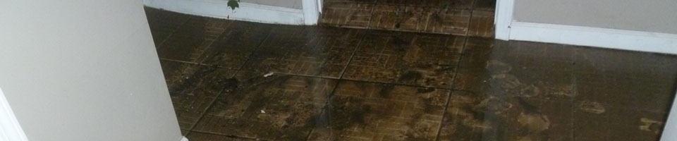 Water Damage Restoration & Repair Services in Chicago