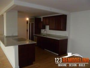 Chicago Condominium Kitchen Remodel
