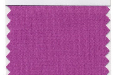 Color of the Year - Radiant Orchid