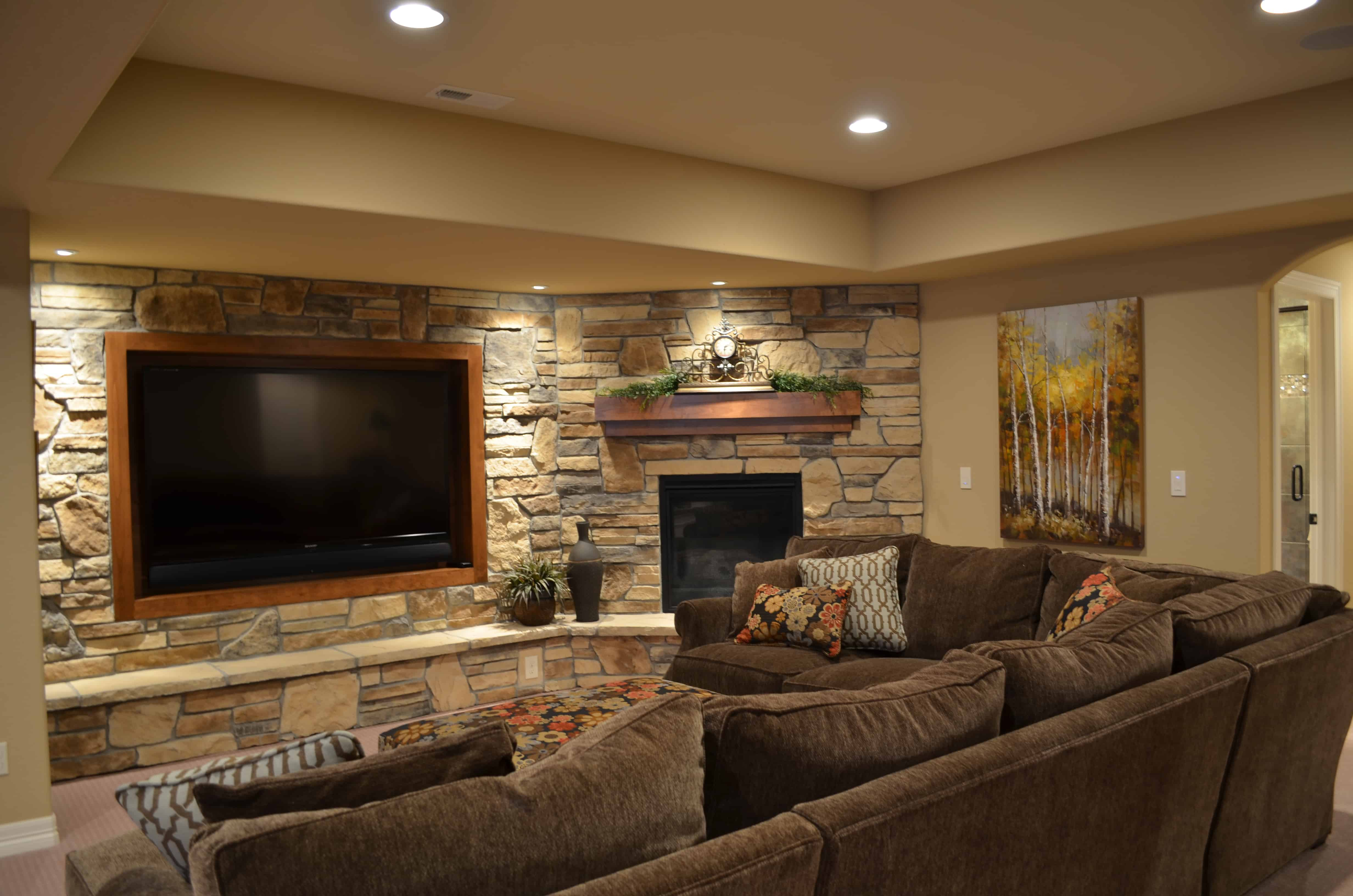Superior Basement Living Room