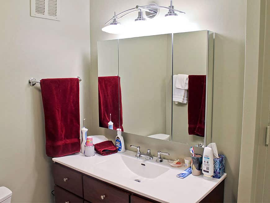 Condo Guest Bathroom Remodel - 505 N. Lake Shore Dr, Chicago, IL (Streeterville)