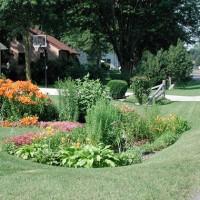 green remodeling rain garden image