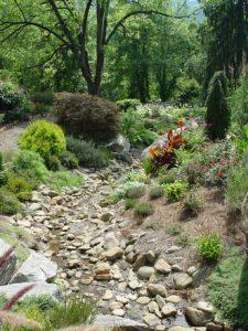 rock-garden-1503916