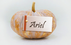 small pumpkin with a card that says Ariel