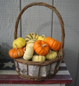 basket of small pumpkins