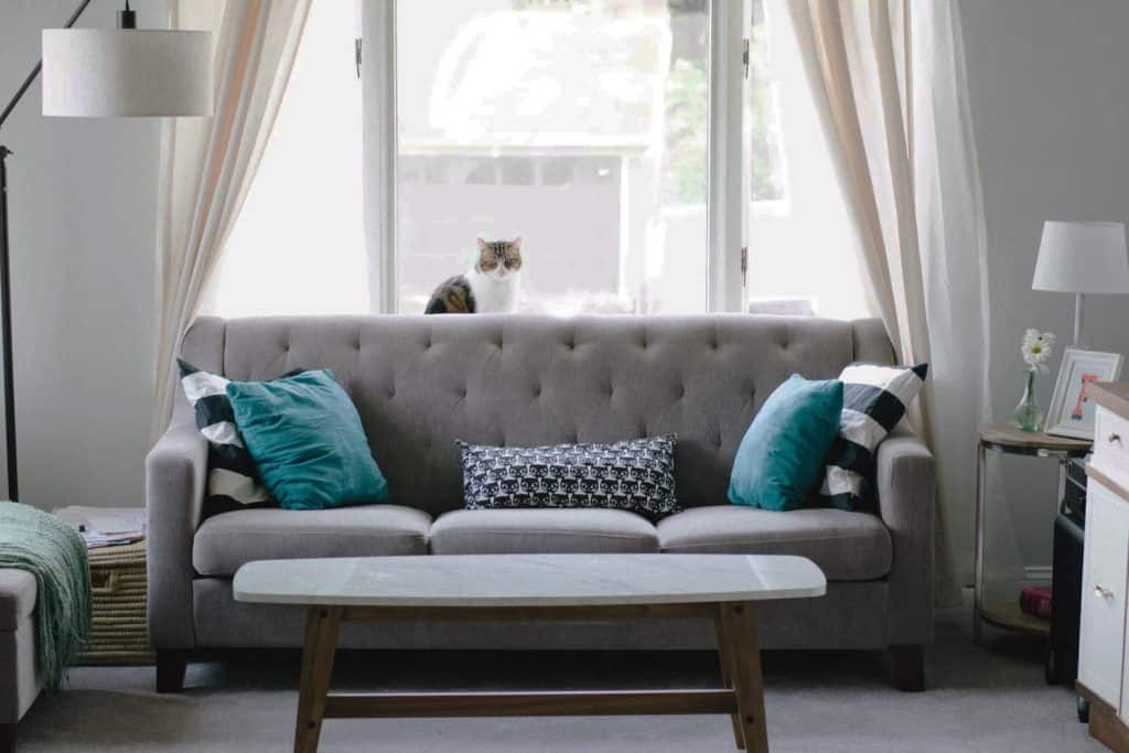 Home Décor Tips: High Style on a Low Budget