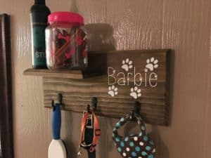 Apartment Hacks for Pet Owners - 123 Remodeling - Kitchen, Bathroom and Condo Remodeling