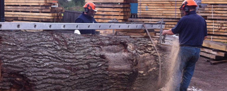 The Benefits of Using Oak Wood in Construction
