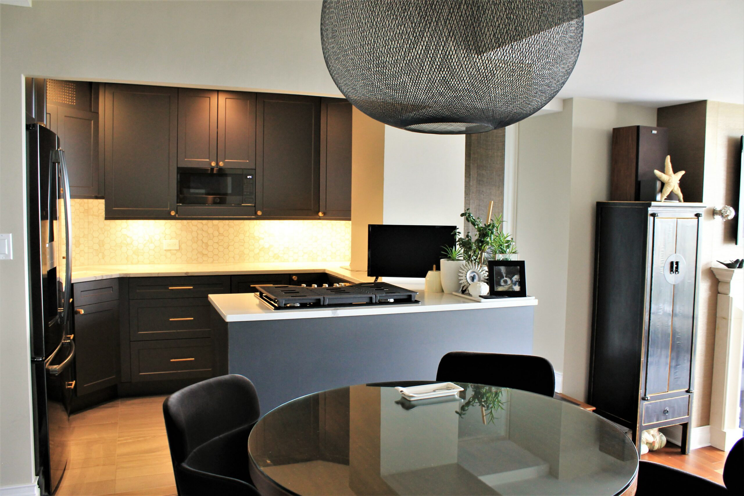 Chicago Lake Shore Drive Kitchen Remodeling