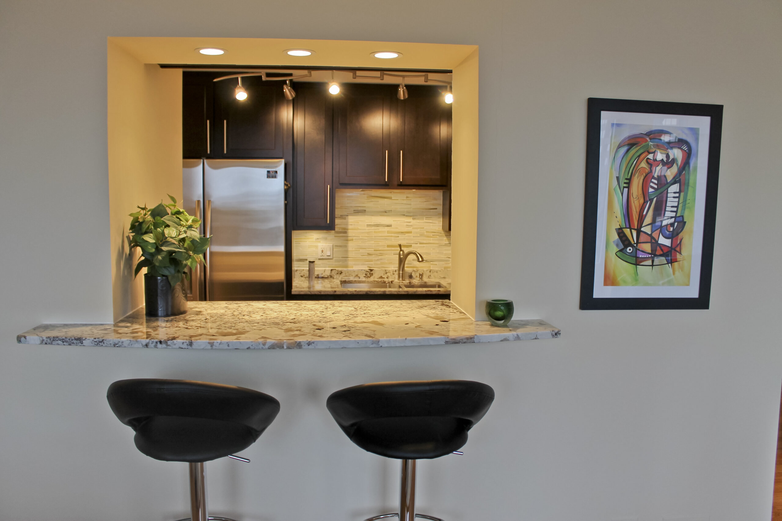 Chicago Magnificent Mile Condo Kitchen Remodel