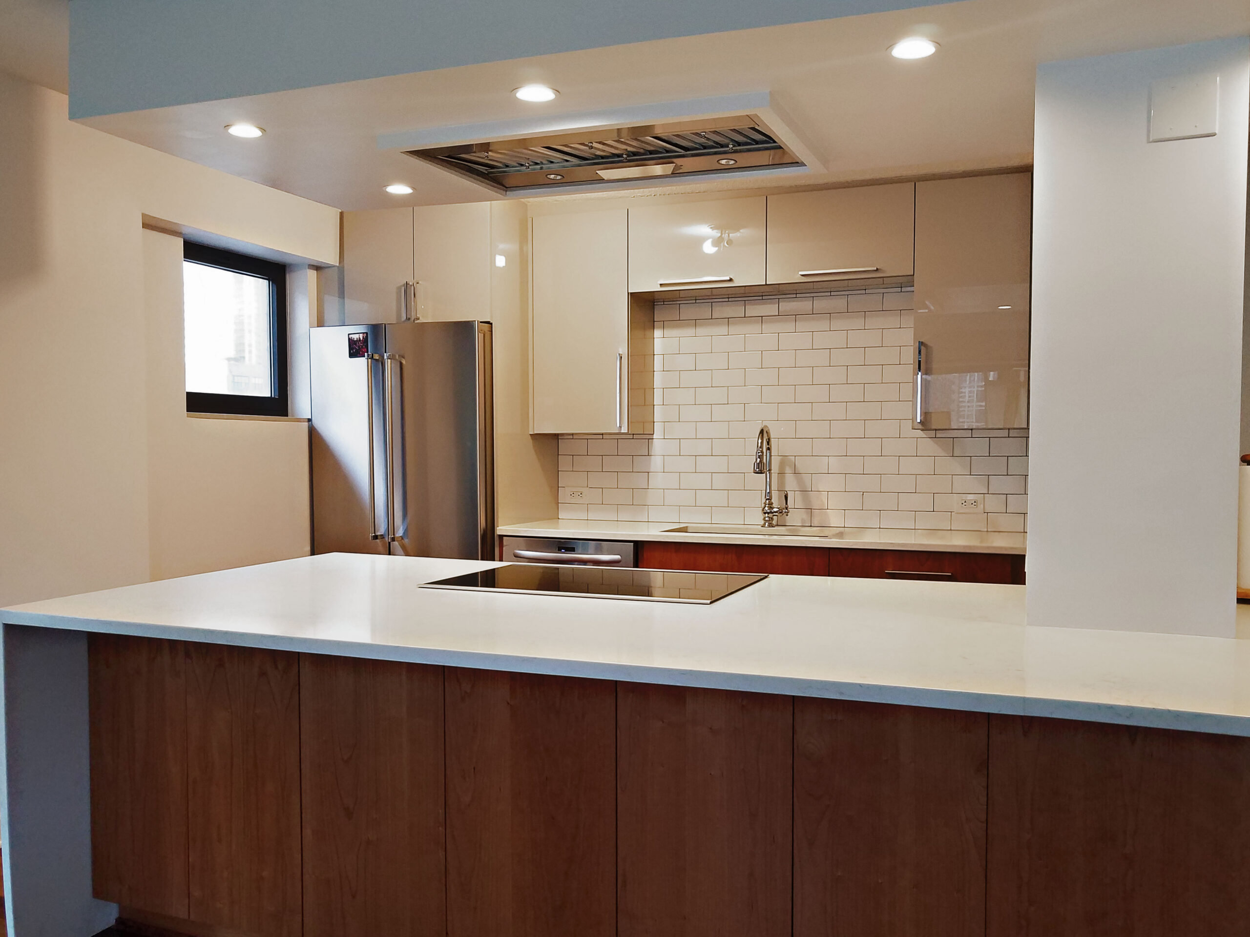 Chicago South Loop Kitchen Remodeling