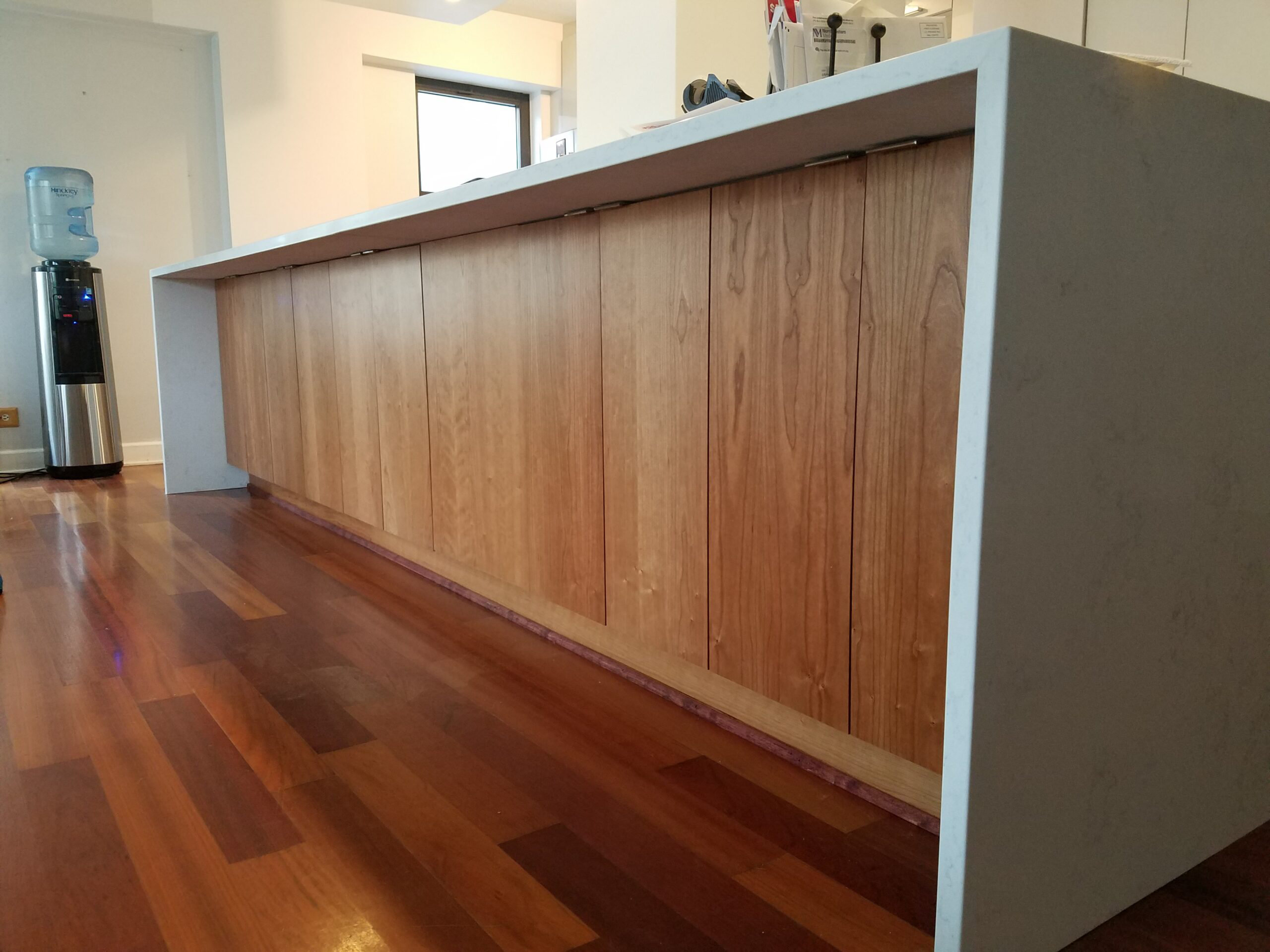 Chicago South Loop Kitchen Remodeling Wood Flooring