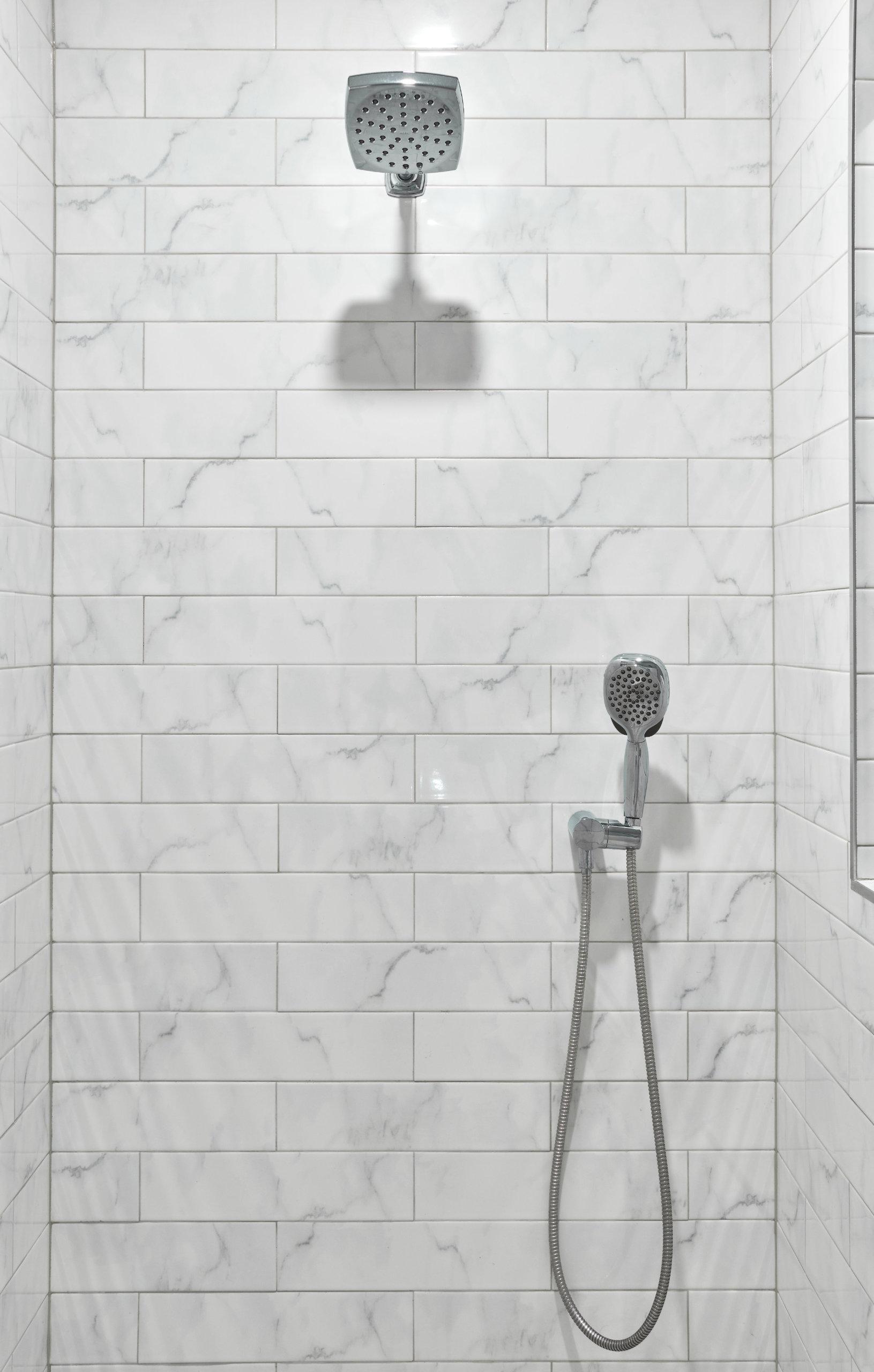Lincoln Park Bathroom Shower Remodel