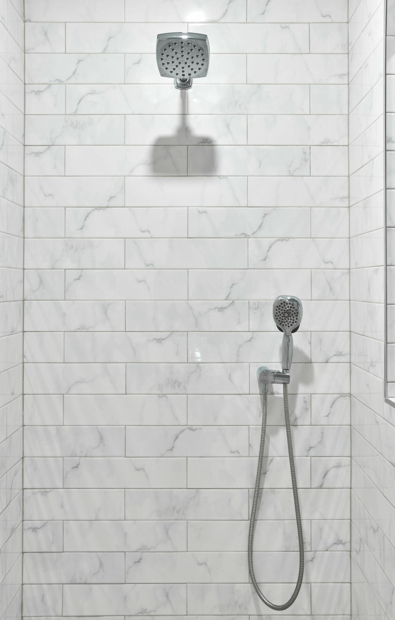 Lincoln Park Bathroom Remodel Walk-in Shower