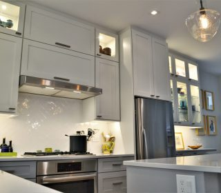 Chicago Wicker Park Townhouse Transitional Kitchen Remodel