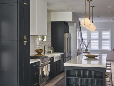 Chicago Lakeview Transitional Kitchen Remodel